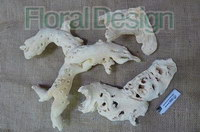 Drift wood bleached