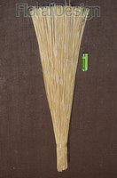 Cane reed 80cm bleached