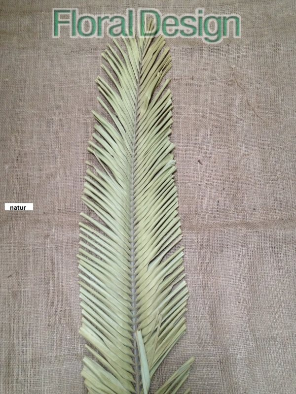 Palm leaves oval 1,5m natur