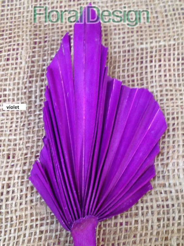 Palm spear medium 10 ks violet