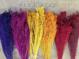 Broom Bloom 100gr.